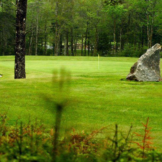 Sherwood Golf & Country Club Greena