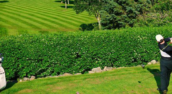 Sherwood Golf & Country Club Header
